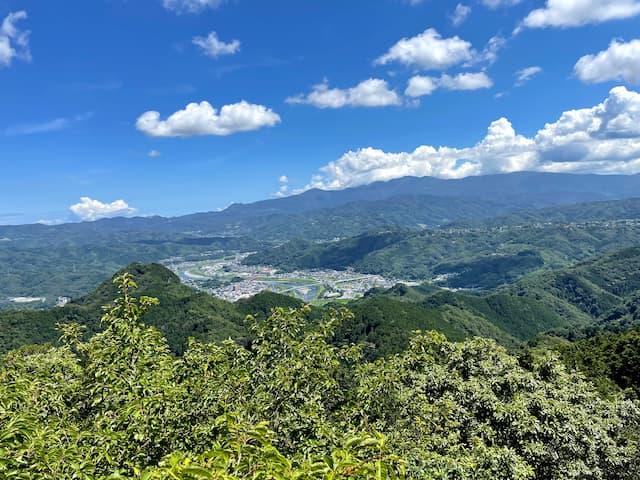 伊豆の国パノラマパークのさえずり展望台から見える景色